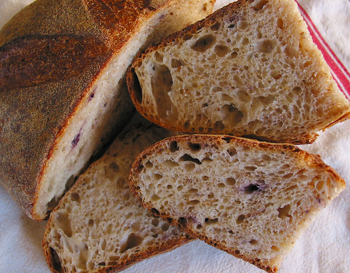 Simple Sourdough Loaf with ground flax seed and dried blueberry