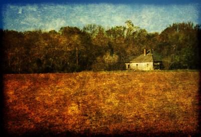 Farm House textured 2