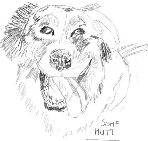 Scruffy dog, part 4