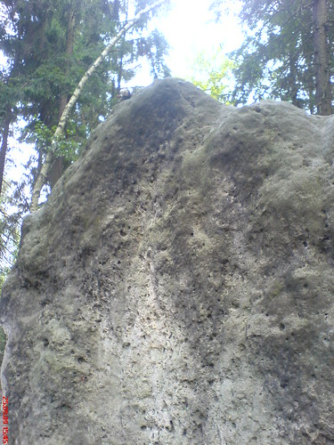 Im Elbsandsteingebirge