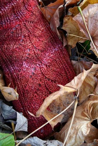 Mystery Sock 2009 : Detail