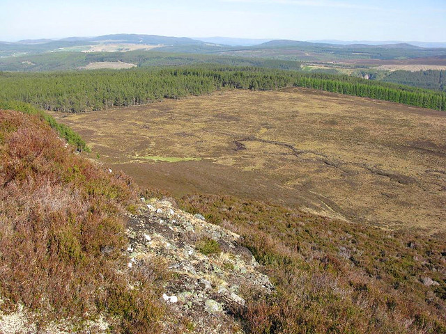 Eskadale Moor and Boblainy Forest