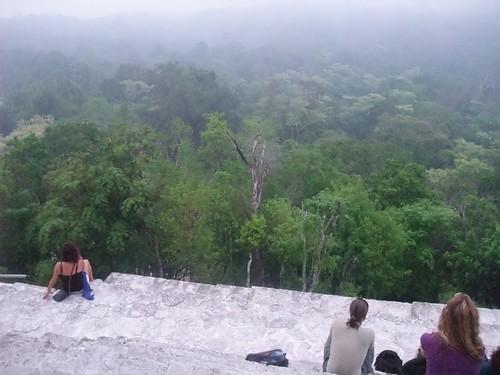 Tikal 113
