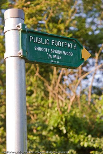 Shocott Spring, Marston Vale _G201401