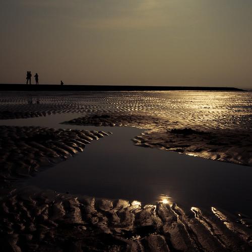 beauty of mudflat