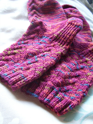 soybean sock pair 2