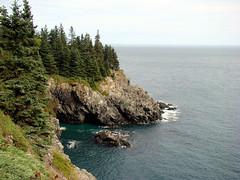 Mermaid's Cove