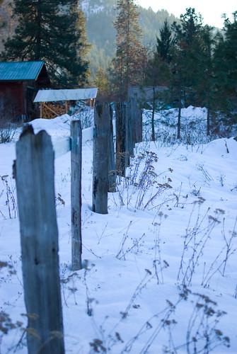 neighbor's fence
