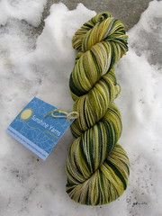 Sunshine Yarn