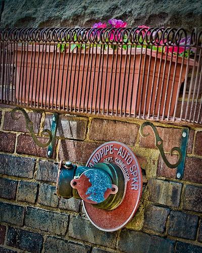 Jim Carlson_Water for Flowerbox