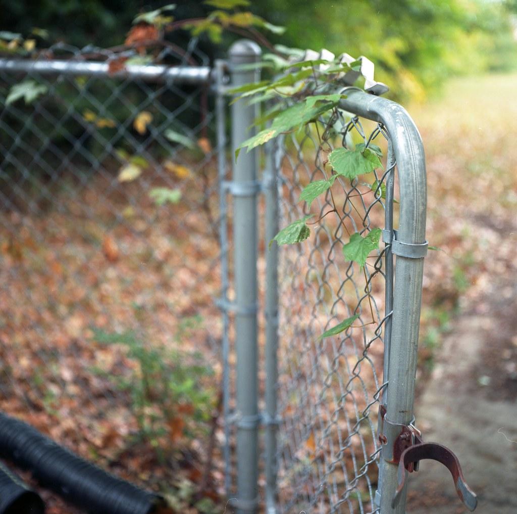 opened fence gate