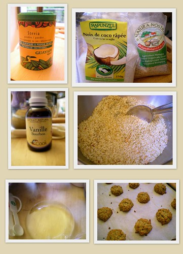 2009 July 23 - sugar-free gluten free cookies