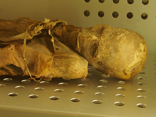 Mummified Guanche at Museum of Man & Nature