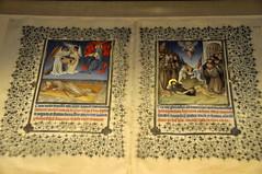 Illuminated Text