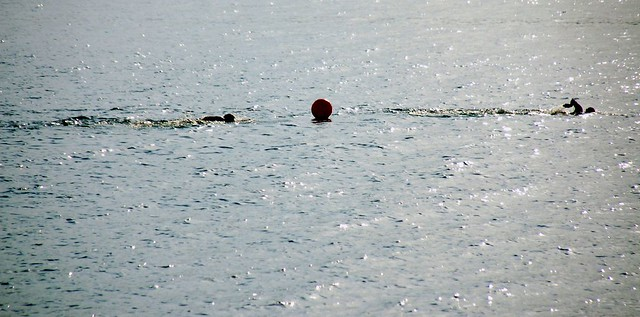 Swimmers passing a waypoint