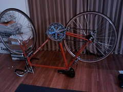 Doing bicycle work in my living room and watching Project Runway