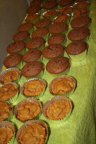 YIP 169.365 Cupcake Overload
