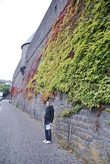 Mayen - Middeleeuwse stadsmuur