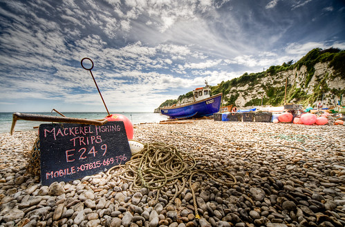 Mackerel fishing by Lee