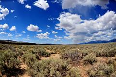 New Mexico (2009)