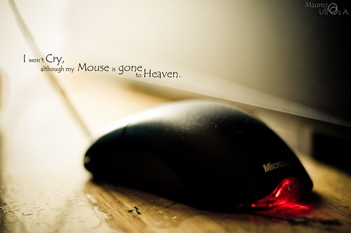 I won't Cry, although my Mouse is Gone to Heaven.