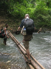 Crossing a bamboo log bridge in the Gibbon Experience