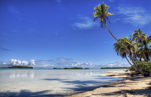 """Leaning Palm HDR, """"A stretch of beach along the Blue Lagoon on the atoll of Rangiroa."""""""