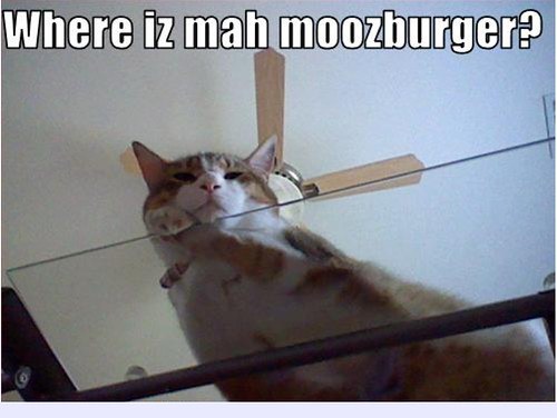 moozburger2
