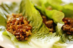 vegetarian tempeh lettuce wraps