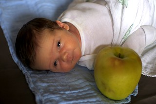 jacob and the giant apple, 3
