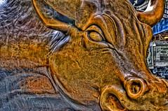 Wall Street - Charging Bull