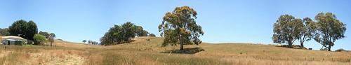 Oakbank Hills Panorama