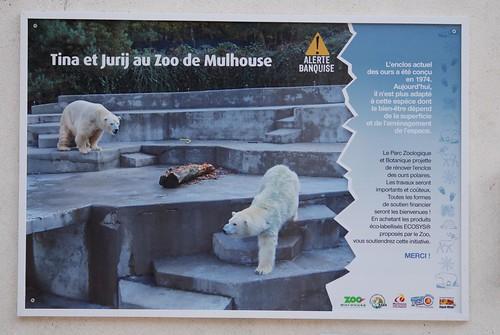 Eisbärenanlage im Zoo Mulhouse