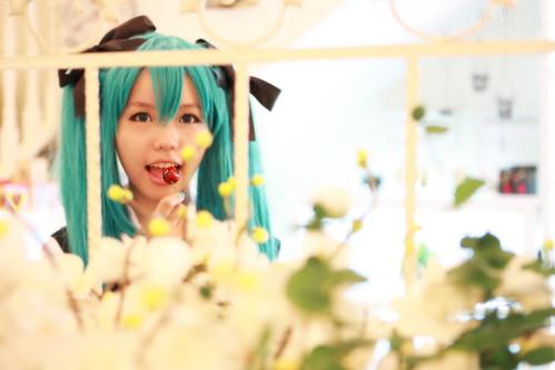 Yume_Miku 07