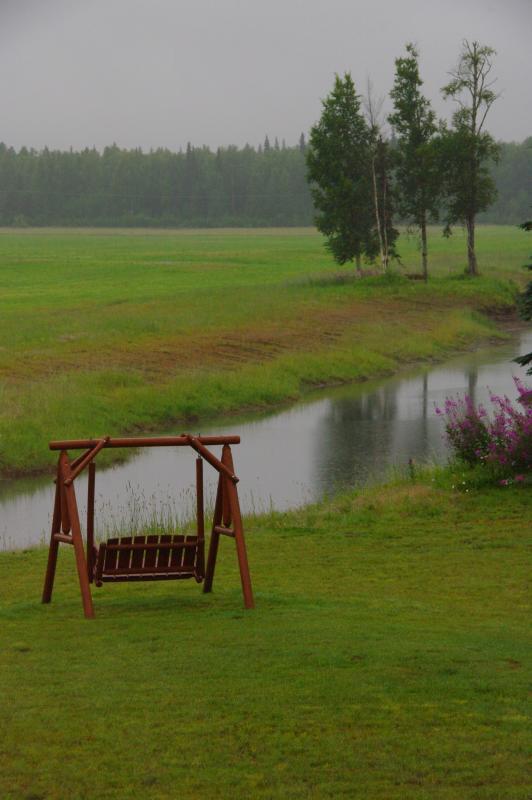 IMGP4647 a Summer Rain
