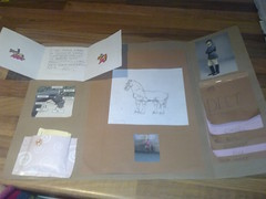 Poppy's completed horses lapbook