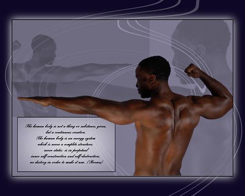 The Human Body (c) 2009, Lynne Medsker