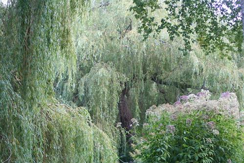 20090919 Edinburgh 20 Royal Botanic Garden 410