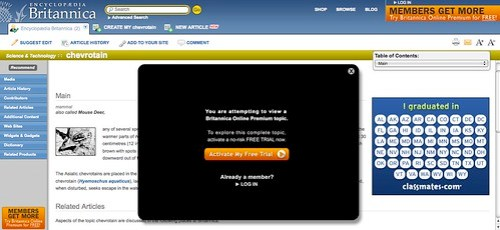 chevrotain (mammal) -- Britannica Online Encyclopedia