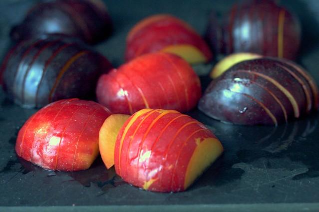 plum armadillos