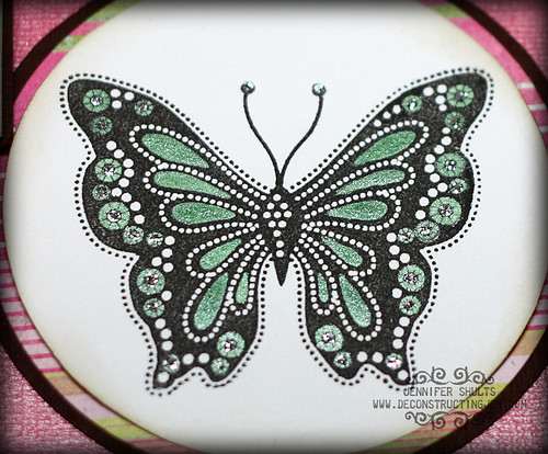 Detail of butterfly for Shimmerz product review