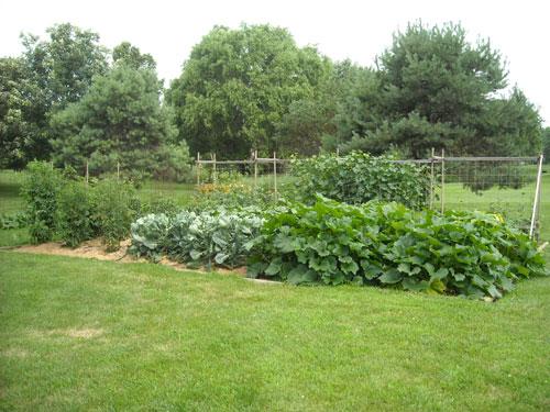 The Garden at Casa Bogan