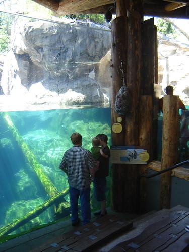 5 grandes parques zoolgicos de USA