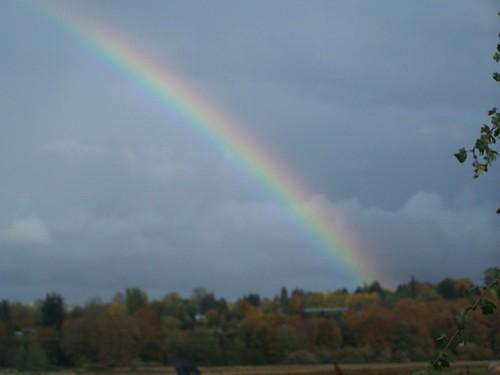 OHHH Rainbow!