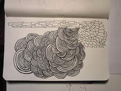 scallop doodle