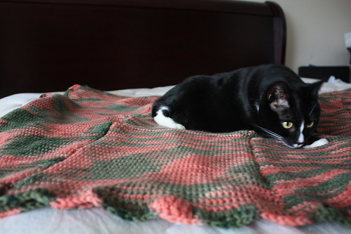 Mom's Blanket -- Christmas 2007