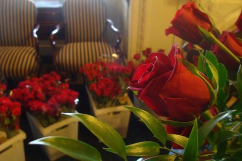 Roses for Speaker Pelosi's Birthday by Speaker Pelosi.