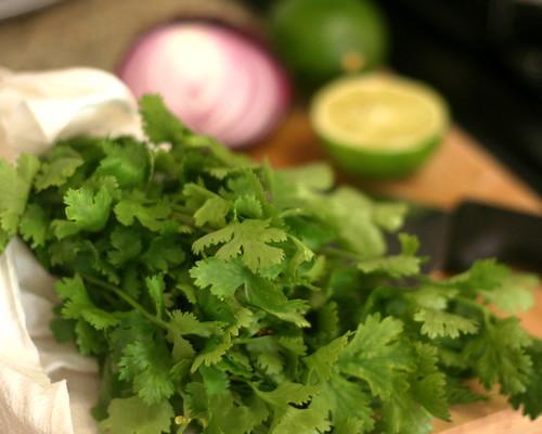 Nectarine & Radish Salsa