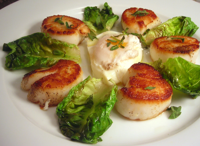 Seared scallops, sucrine lettuce and poached farm egg