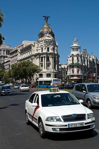 La fauna de Madrid